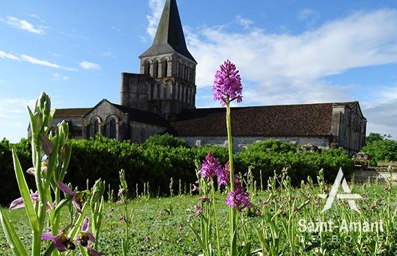 Saint-Amant-de-Boixe-grand-projet-abbaye